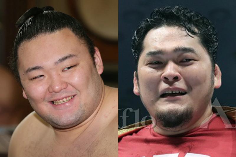 矢野通と朝乃山の顔写真