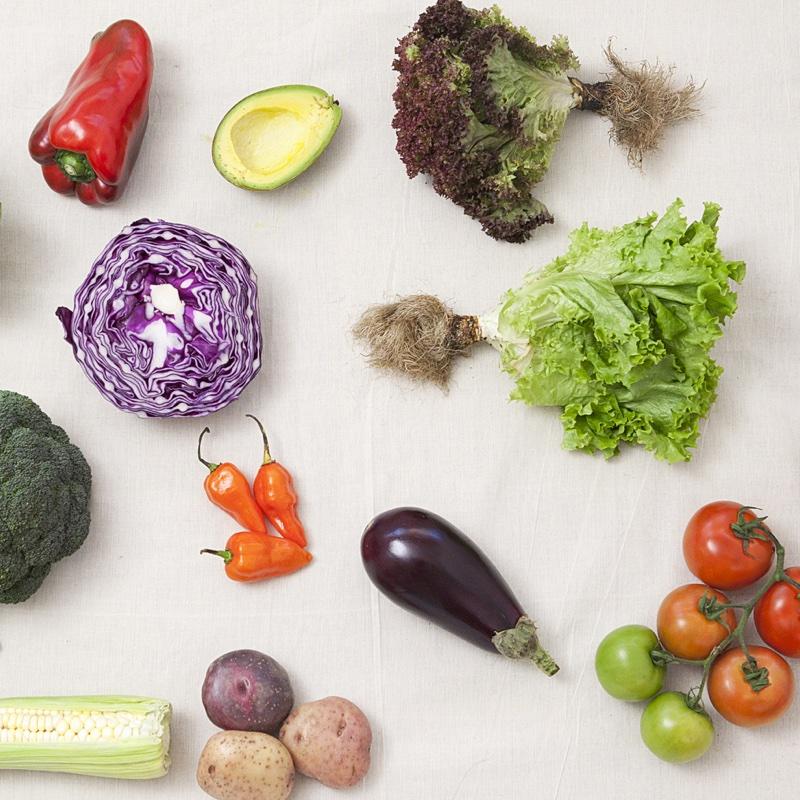 テーブルの上に並べられたカラフルな野菜