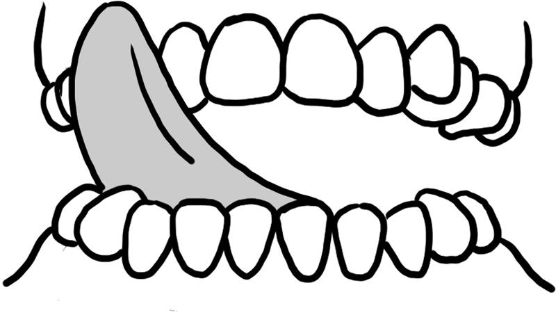 舌を伸ばして歯茎の表面をなぞる