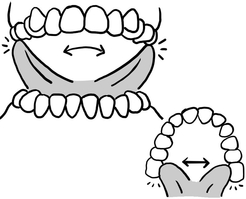 外側と内側の歯茎をなぞり終えたら、舌を伸ばしていちばん奥の歯にさわる