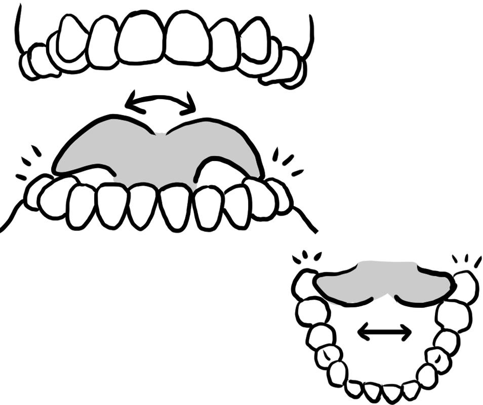 上あごのいちばん奥の、右と左の歯を舌でさわる