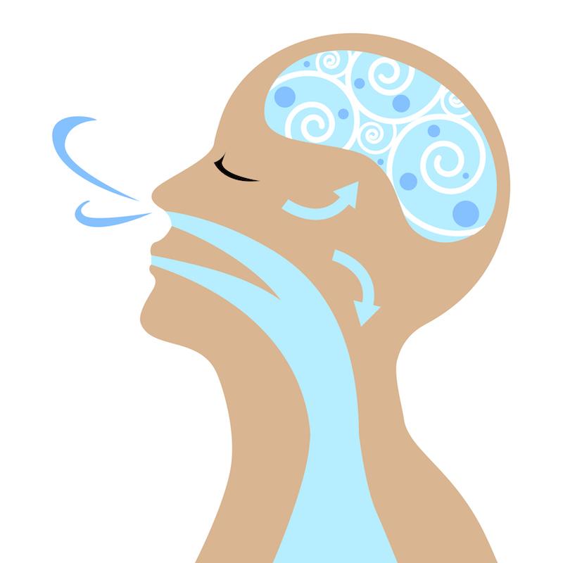 鼻から息を吸うイメージのイラスト