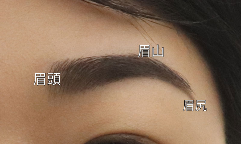 女性の理想の眉毛