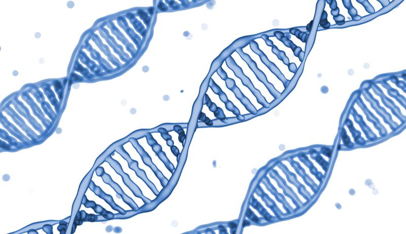 DNAのイメージイラスト