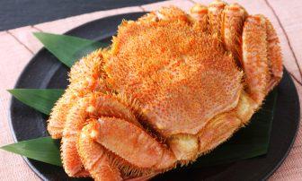 今が旬!海鮮グルメお取り寄せ3選|北海道の毛ガニなど有名人おすすめの逸品