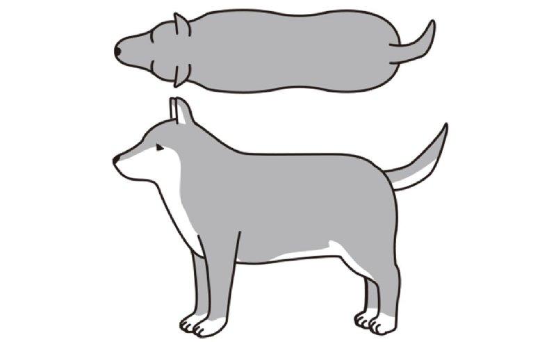 BCS5(肥満)の犬のイラスト