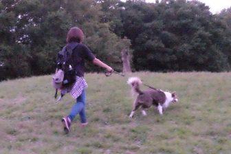 犬の散歩は健康に最適!ワンちゃんと一緒に健康寿命を延ばす歩き方のコツ