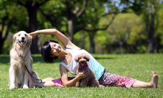 愛犬と一緒に運動してダイエット|注目のドッグヨーガ、ディスクドッグで痩せる
