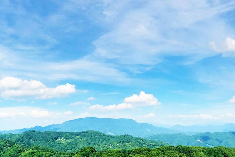 「カミツレの宿 八寿恵荘」周辺の景色