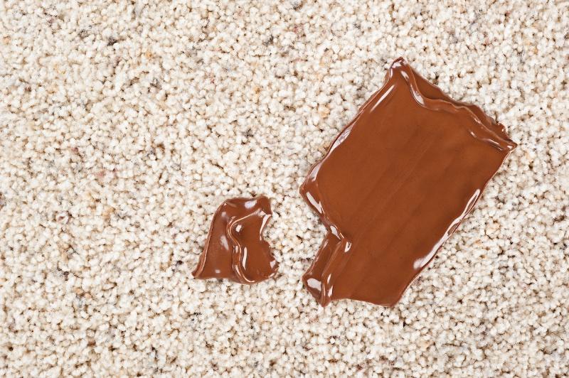 カーペットの上に溶けたチョコがのっている