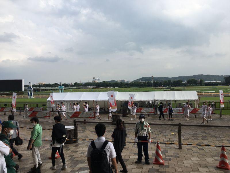 トーチキスが行われた東京競馬場